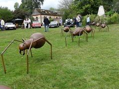 2015.08.23-029-jardin-des-sculptures[1]