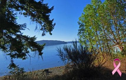 Puget Sound along US 101