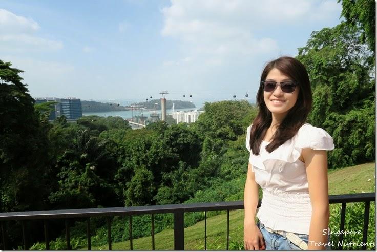 新加坡花柏山 (13)