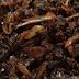 Masakan Sambal Hitam Pahang