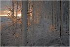 Teufelsmoor - Sonnenaufgang im November
