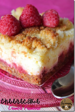 Cheesecake Crumble Framboise 11