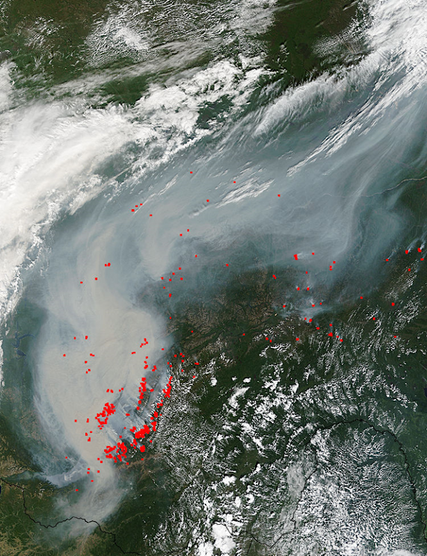 This natural-color satellite image was collected by the Moderate Resolution Imaging Spectroradiometer (MODIS) aboard the Terra satellite on 24 August 2015. Actively burning areas, detected by MODIS's thermal bands, are outlined in red. Photo: Jeff Schmaltz / MODIS Rapid Response Team