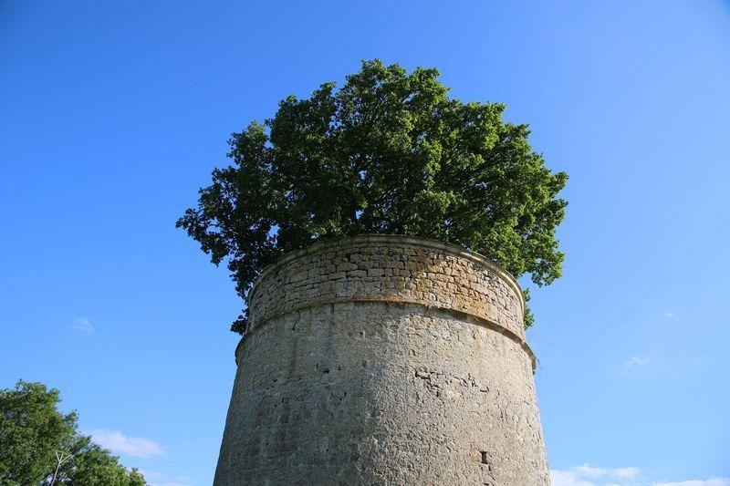 oak-dovecote-pouzay-4