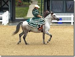 KY horse park 101