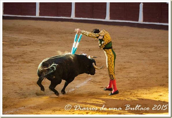 Toros Feria 2015-9981