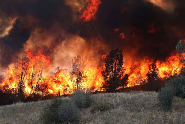 Flames from the Rocky fire near Clearlake, California, 3 August 2015. Photo: Justin Sullivan / Getty Images