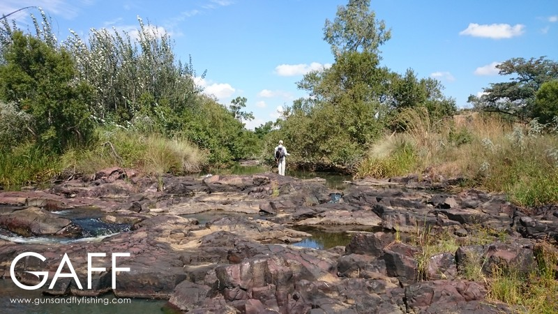 smallstream-fly-fishing-africa-bass-river-gaff-explore-urban (5).jpg
