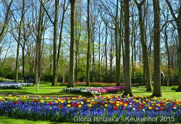 1 .Glória Ishizaka - Keukenhof 2015 - 67