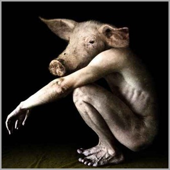 hibrido-homem-porco