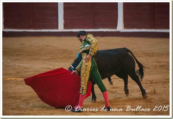Toros Feria 2015-9992