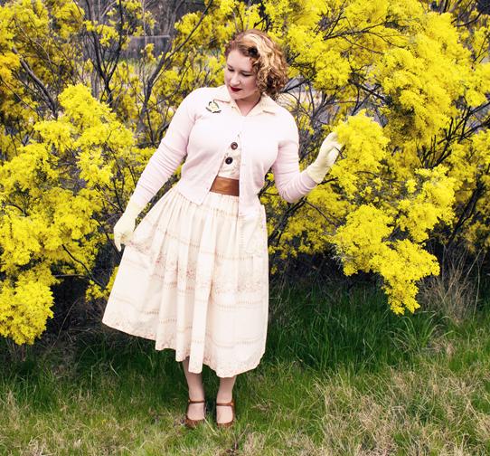 Golden Wattle in blossom | Lavender & Twill