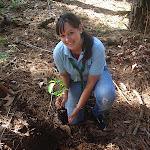 Tania plantando