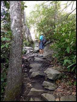 01l - Looking Glass Rock Hike - Hiking up - The higher we got the steeper it got