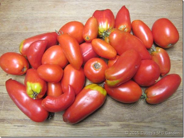 Paste_tomatoes