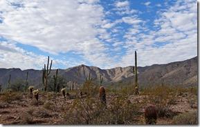 Black Canyon White Tank Park hike 026