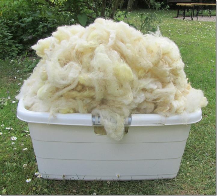 Wollwäsche 3