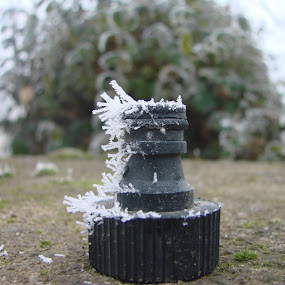 Water Tap Part in Winter Conditions by Ivan Mendes - Artistic Objects Other Objects ( winter, cold, grass, bush, part )