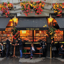 The Red Lion by Tomasz Budziak - City,  Street & Park  Street Scenes ( london, street scenes, city )