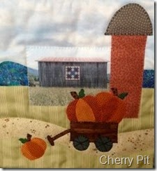 Cherry Pit Barn Block