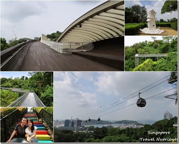 新加坡花柏山 (113)