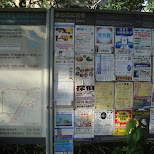 in Yokohama, Tokyo, Japan