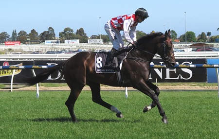 race 6_awesome rock 2