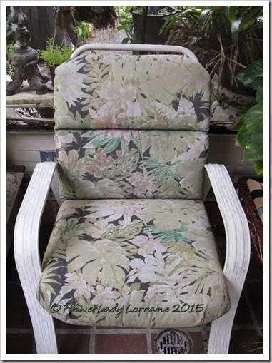 05-06-cushion