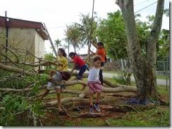 Typhoon Prep (23) (1024x768)