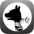 Download Hand Shadow Puppets Ideas APK