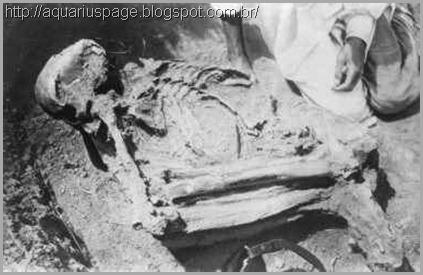 esqueleto-moderno-de-milões-de-anos