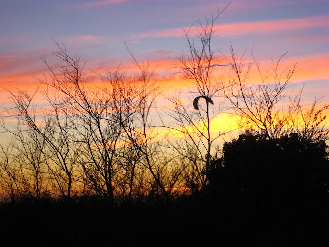 Sunset wonder