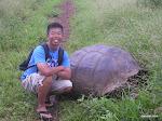 Giant Tortoise, Galápagos Islands  [2005]