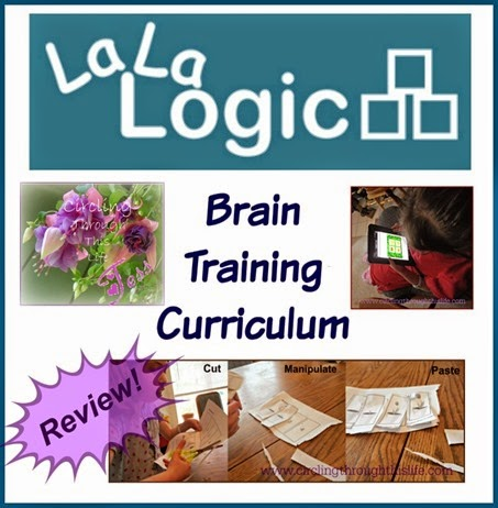 La La Logic ~ Brain Training Curiculum for young children. Has both online and offline components. Read review by Tess at Circling Through This Life