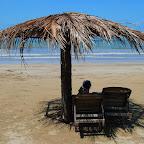 Na plaży siedzimy sobie pod grzybkiem. A wokół nas...