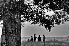 1 maggio 2014 Vesime. Loazzolo e Canelli - fotografia di Vittorio Ubertone