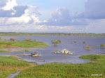 Iquitos, Peru  [2005]