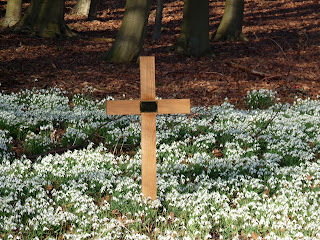 A cross in the Snowdrops at Calwich Abbey