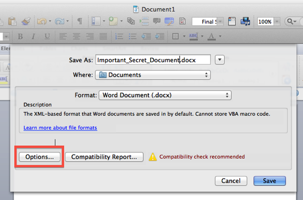 Microsoft Word Save As… box