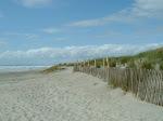 Protection des dunes