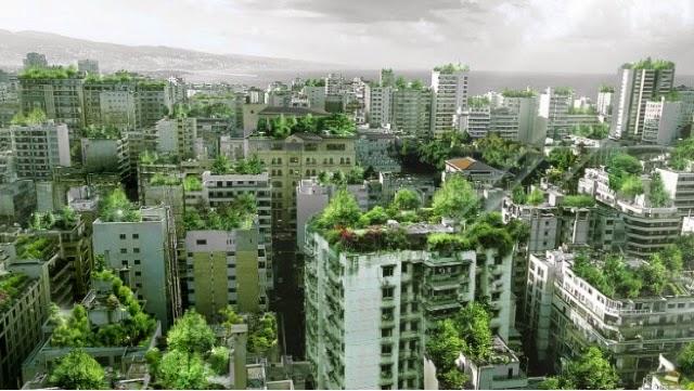 Ciudades techos verdes aire limpio contaminación