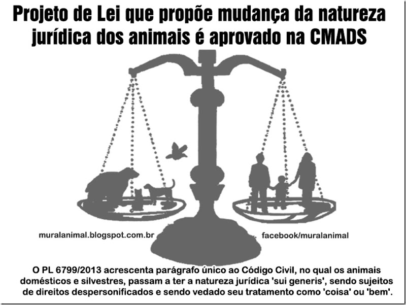 animais_sujeitos-direitos