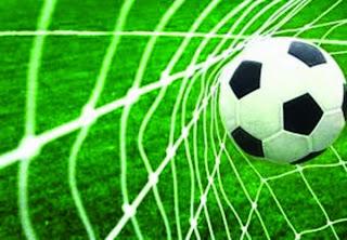 Eliminatoires Euro 2016 : Ibrahimovic permet à la Suède de s'imposer