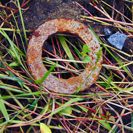 rusted  industrial washer  by Audra