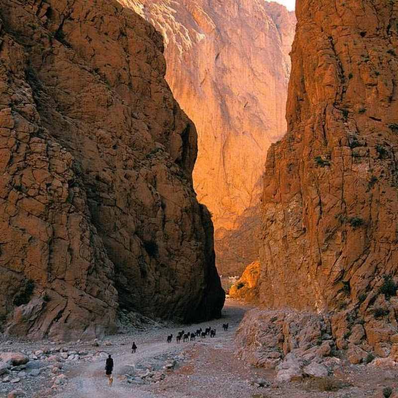 Todra Gorge of Morocco