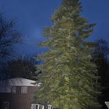 Kerstboom uit Oude Pekela naar Grote Markt Groningen - Foto's Abel van der Veen en Herman Alink
