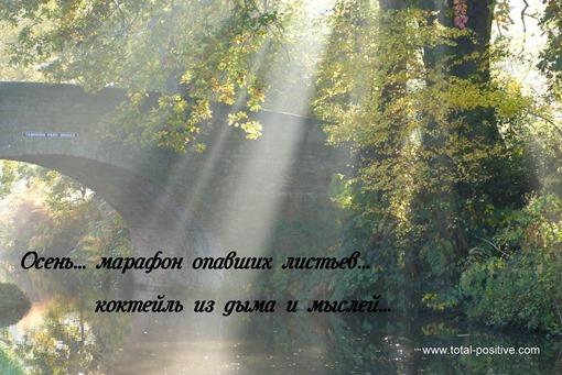 Лучи света пробиваются сквозь листву на поверхность воды в канале