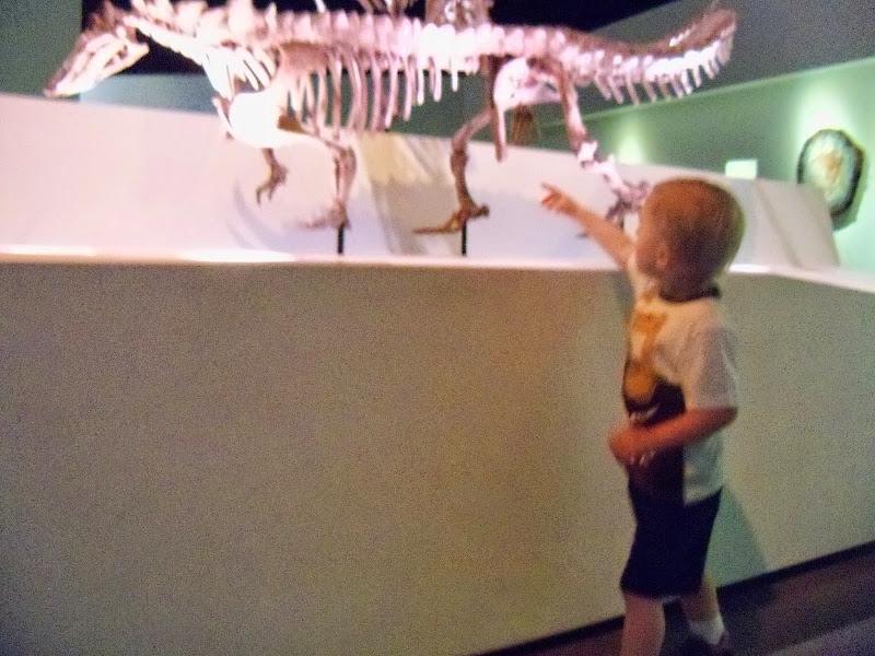 Houston Museum of Natural Science - 116_2704.JPG
