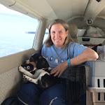 PnP Rescue - Darla the Blind Beagle - April 2015 - 02