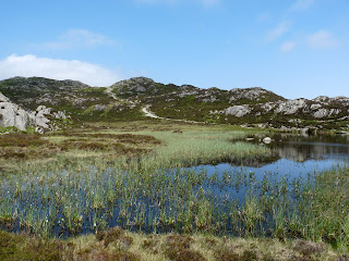 Innominate Tarn - from the far side.